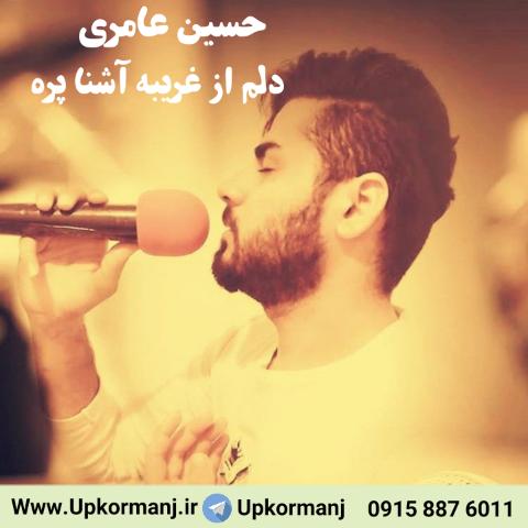 دانلود آهنگ جدید حسین عامری به نام دلم از غریبه آشنا پره